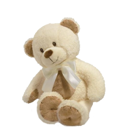 Cozy Cuddles Teddy Bear for Baby Image