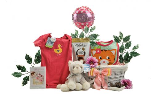 Classic Baby Girl Gift Basket
