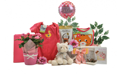 Blooming Baby Girl Gift Basket