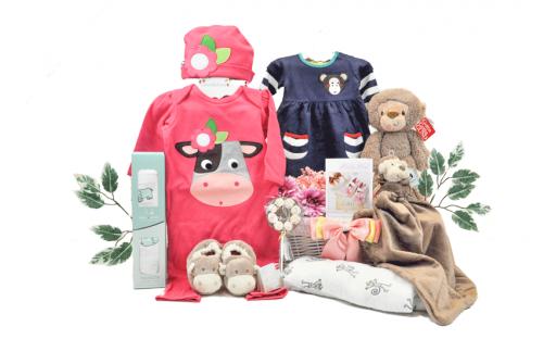 Cheeky Monkey Baby Girl & Sibling Gift