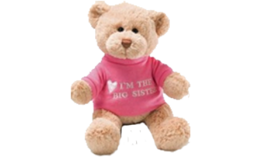Message Bear Gund Girl