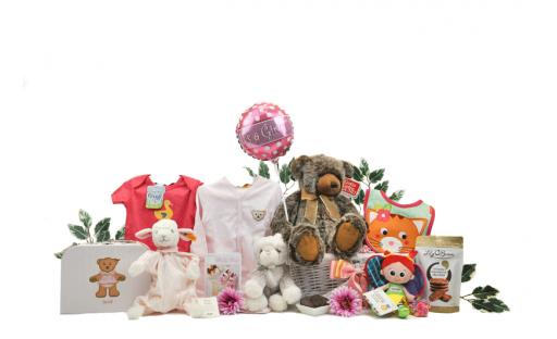 Signature Baby Girl Gift Basket