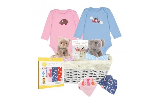 Twice As Nice Gift Basket for Twins