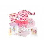 Baby Love Girl Gift Basket