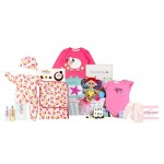 Special Delivery Baby Girl Hamper