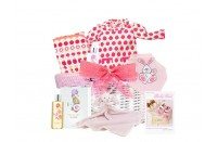 Baby Love Baby Girl GIft Basket