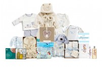 Purely Organic Baby Boy Gift Basket