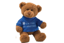 Big Brother Message Bear Boy by Gund